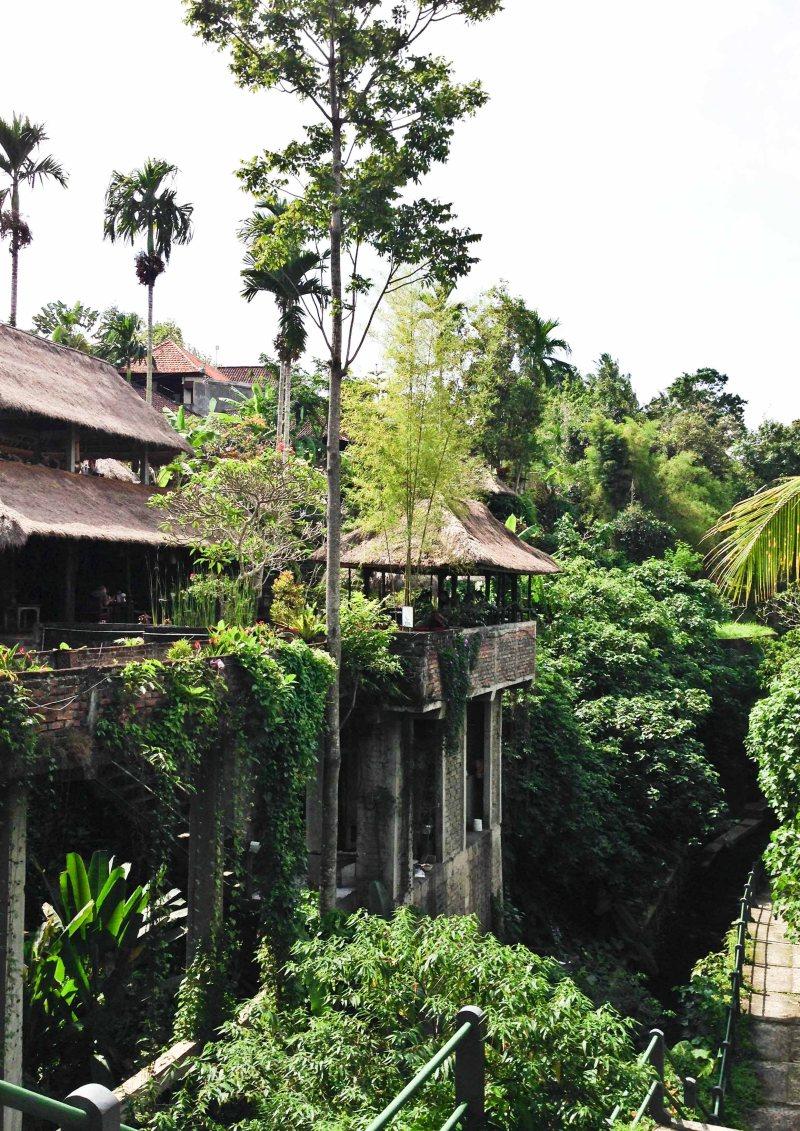 Bali-iPhone5