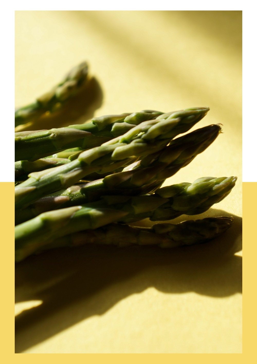 asparaguscolors3