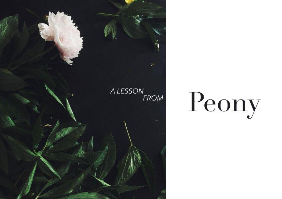 peony1